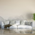 How To Deal With Flooded Carpets – Mansfield Experts Share Top 4 Damage Prevention Tips